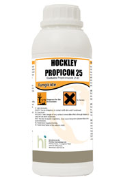 hockley-propicon-25.jpg